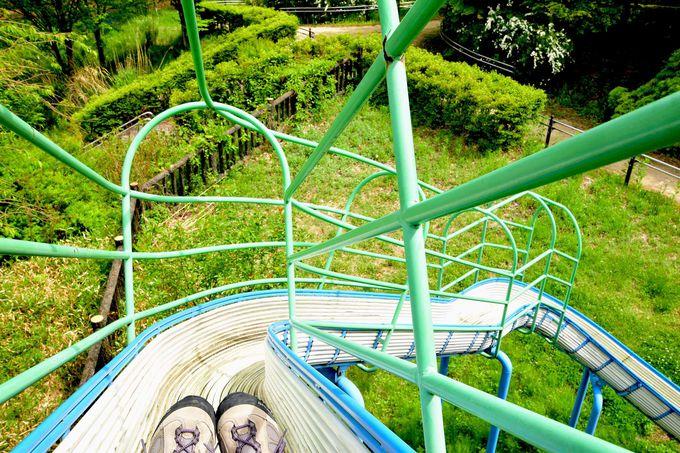 「稲包せせらぎ公園」で四万ブルーウォーキング