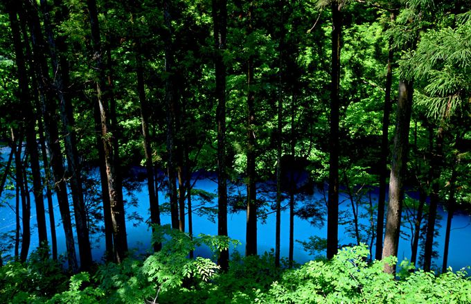 1.美しい自然に癒される…群馬「四万ブルー」