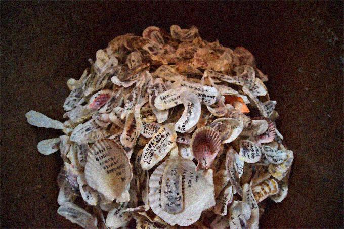 願いを貝に託して貝殻祈願