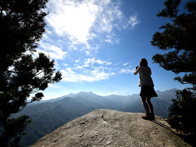 屋久島「白谷雲水峡&太鼓岩」は半日で楽しめる感動スポット