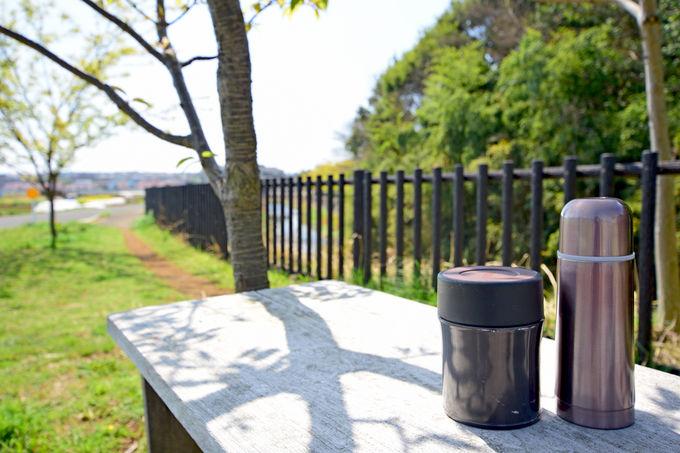 「和泉川健康のみち」を歩いて自然を満喫しよう