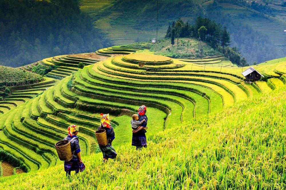 ベトナムのおもな観光スポット・アクティビティ