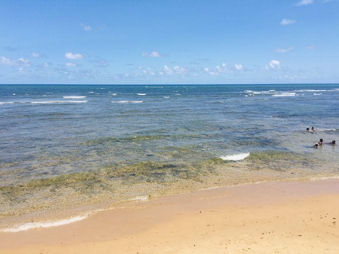 透明度の高い海と賑やかなビーチ