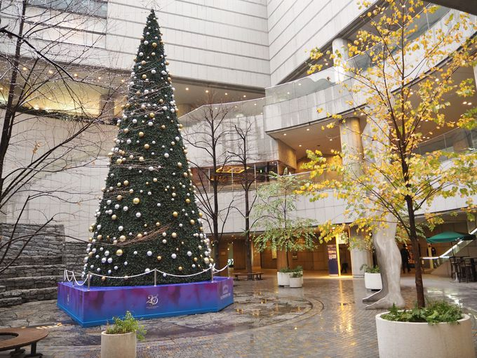 まだまだある東京オペラシティのお奨めスポット