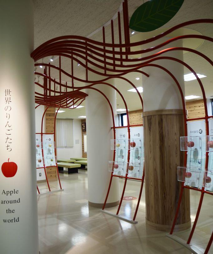 りんごの全てが分かる「弘前市りんご公園」シードルも!