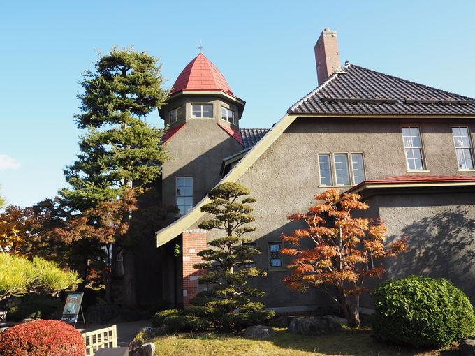 登録有形文化財・旧藤田家別邸「大正浪漫喫茶室」で大人のティータイム