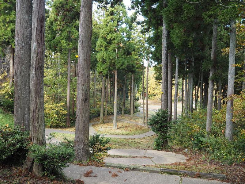 み〜つけた!福井・あわら市の素敵なアートスポット「金津創作の森」