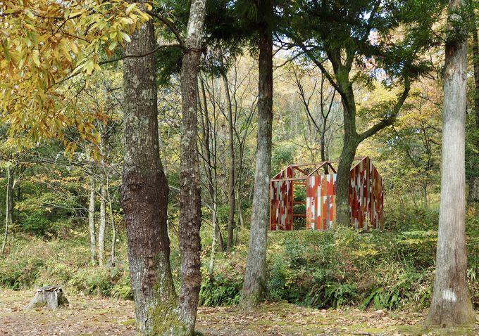 森の中でみ〜つけた!素敵なアート達