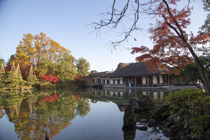 世界が認めた庭園「養浩館庭園」の見所