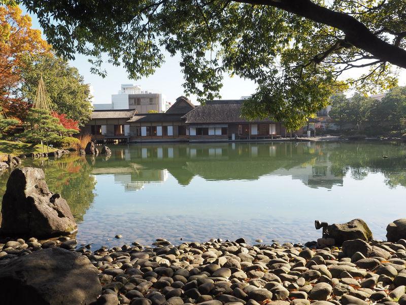世界でも高評価!福井「養浩館庭園」は駅近の超穴場!