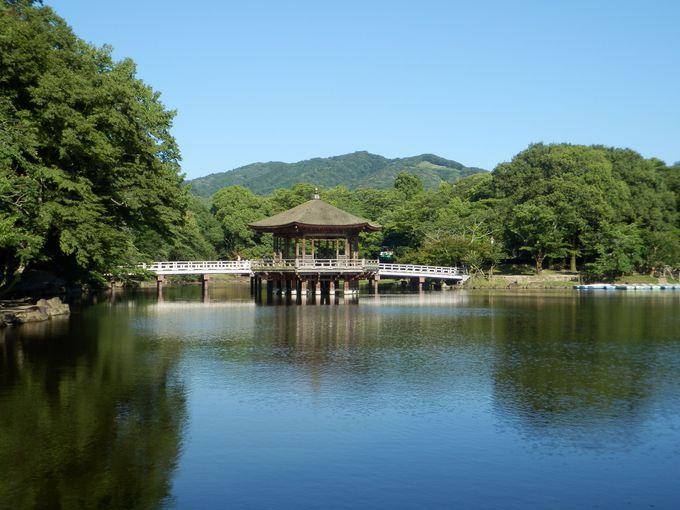 8.奈良公園