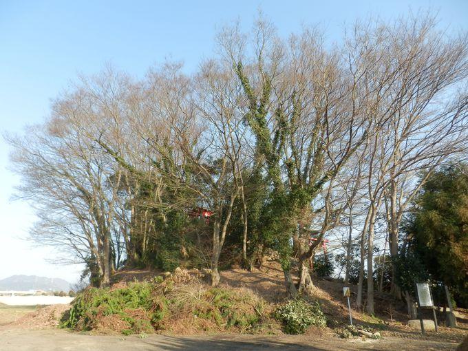 「福岡の市」をめぐる攻防戦をいまに伝える福岡城跡