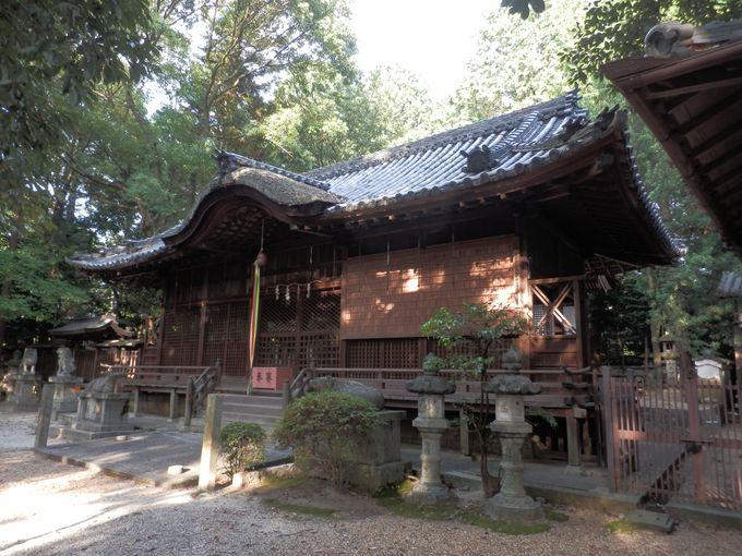 巨大な前方後円墳の上に!?重要文化財の本殿を持つ和爾下神社