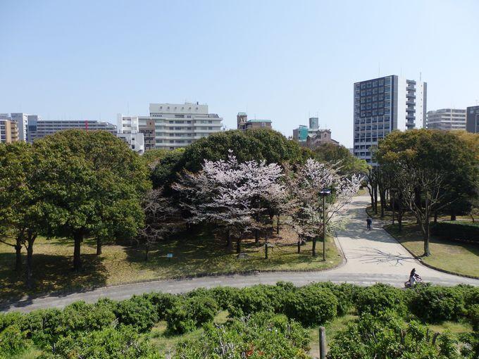 都会のオアシスを実感!亀山上皇像からの眺め