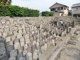 いったい何体あるの!?石仏・石塔のメッカ・奈良市の称名寺