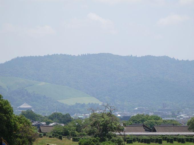 雄大な景色も堪能しよう!奈良盆地を一望のもとに!