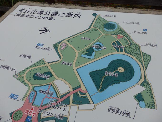 こんなにたくさんの古墳が!古墳公園として整備された玉丘史跡公園