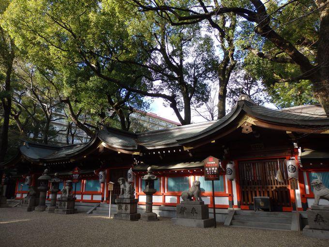 日本で唯一の連歌所も残る!平野郷の繁栄をしのばせる杭全神社