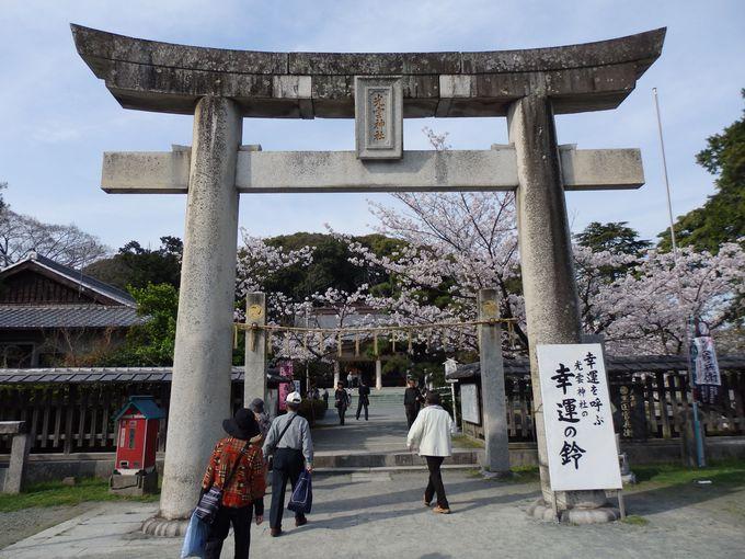 園内に鎮座する光雲神社