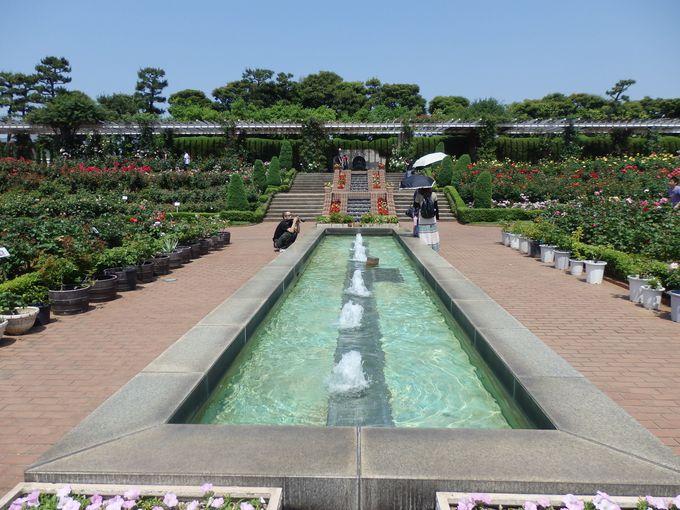 噴水や水路まで!開放感あふれる園内