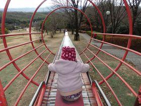 スリル満点!京都府城陽市総合運動公園のローラースライダー