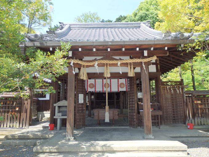 熊野を京都へ!?熊野詣を愛した後白河院創建の新熊野神社