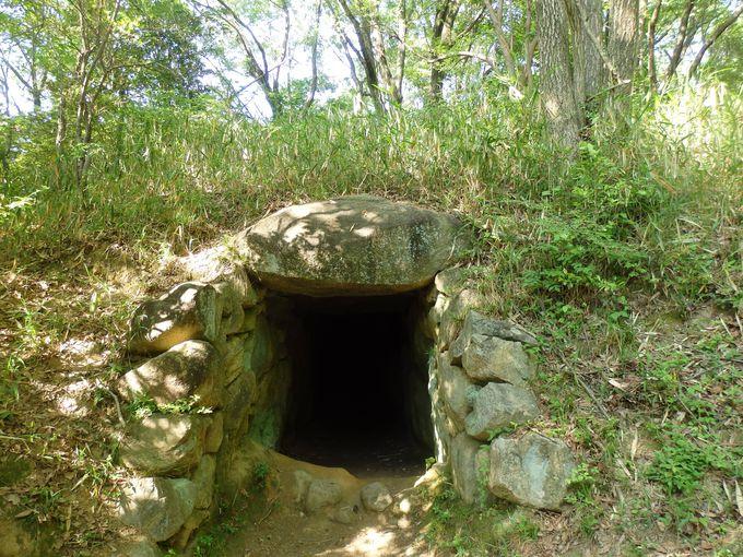 一須賀古墳群最大の規模を持つD4号墳