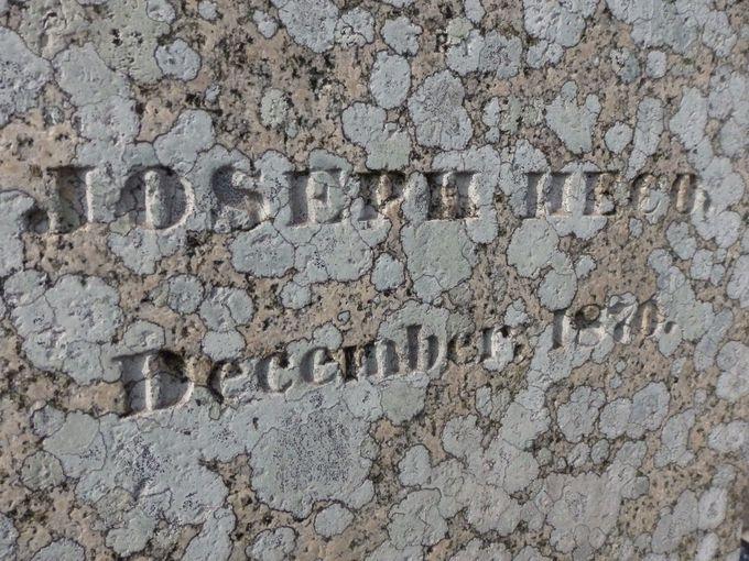 墓石に刻まれた文字に注目!「横文字の墓」と呼ばれる理由
