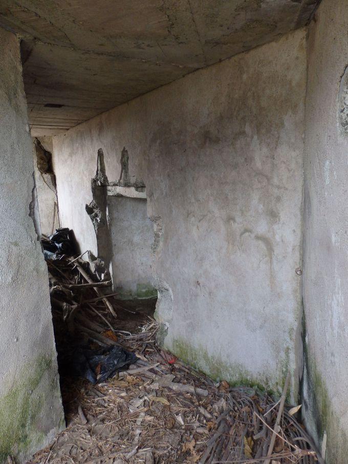 開口部から見える防空壕の内部