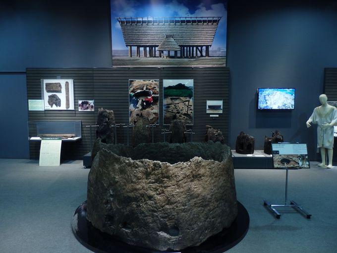 弥生時代では日本最大の井戸枠!池上曽根遺跡の出土品を展示する大阪府立弥生文化博物館
