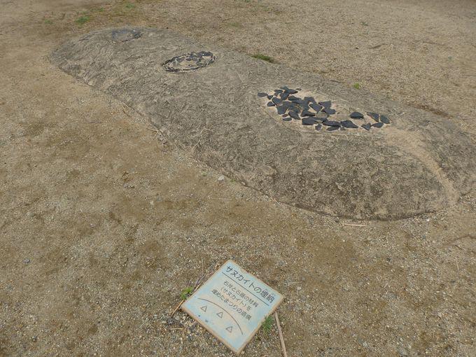 祭祀の痕跡を示すサヌカイト埋納施設