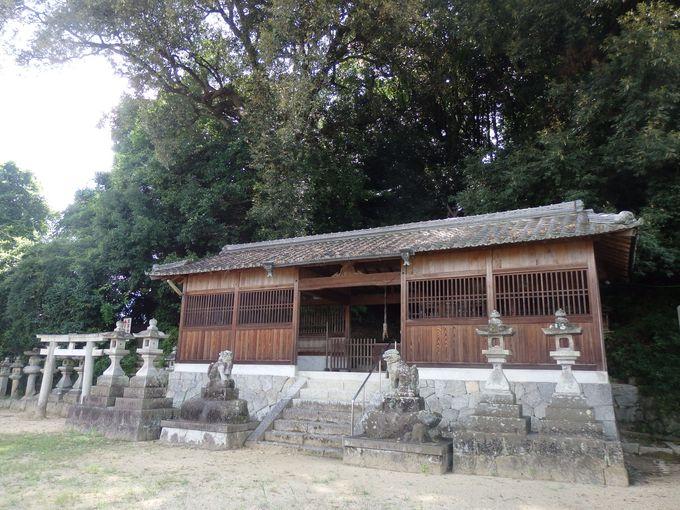 墳丘に登ろう!八幡神社から続く登り道