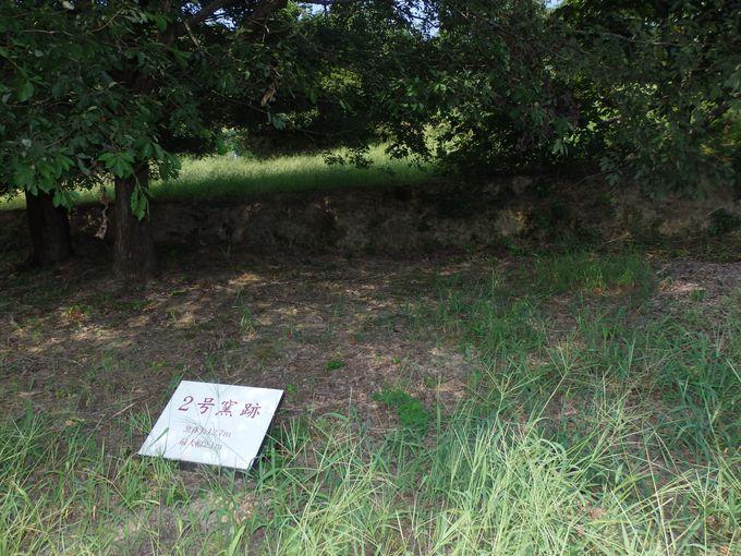 トンネル式穴窯構造を持つ2号窯跡