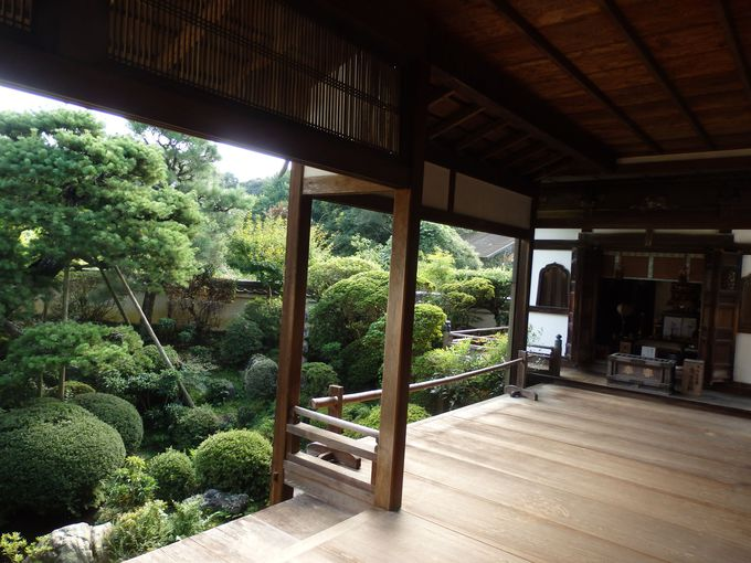 縁側に腰をおろしてのんびりしよう!旧地蔵院と庭園