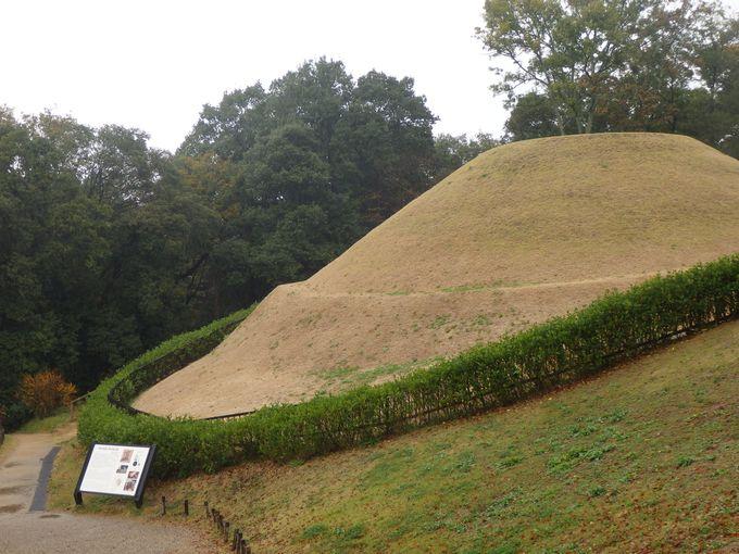 復元された墳丘をじっくり観察しよう!2段式の円墳