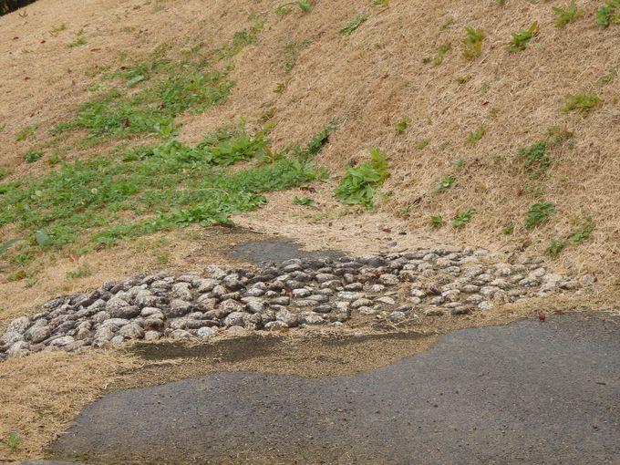 復元された礫詰めの暗渠遺構