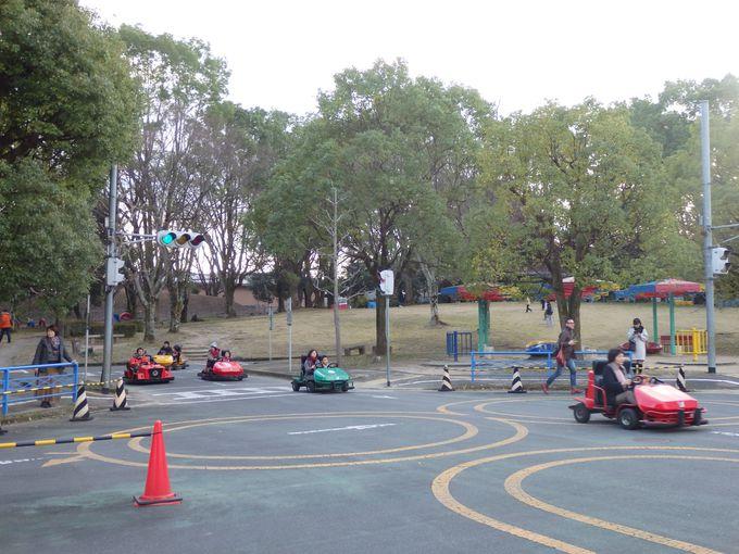 交通ルールを守って運転しよう!園内を疾走するゴーカート