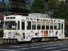 「たま電車」から驚きの電停まで!岡山市の路面電車「岡電」