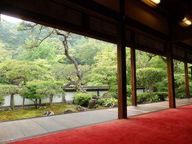 新緑を堪能!深山幽谷の雰囲気をたたえる奈良の古刹・正暦寺