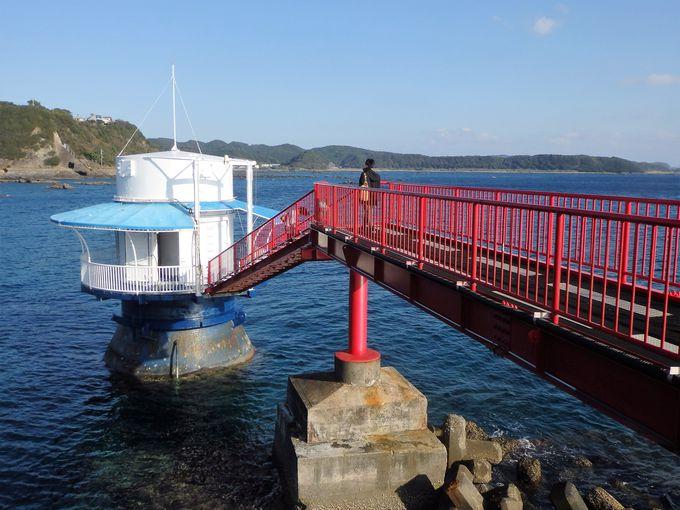 和歌山にサンゴ礁?太平洋の生きもの満載の「串本海中公園」