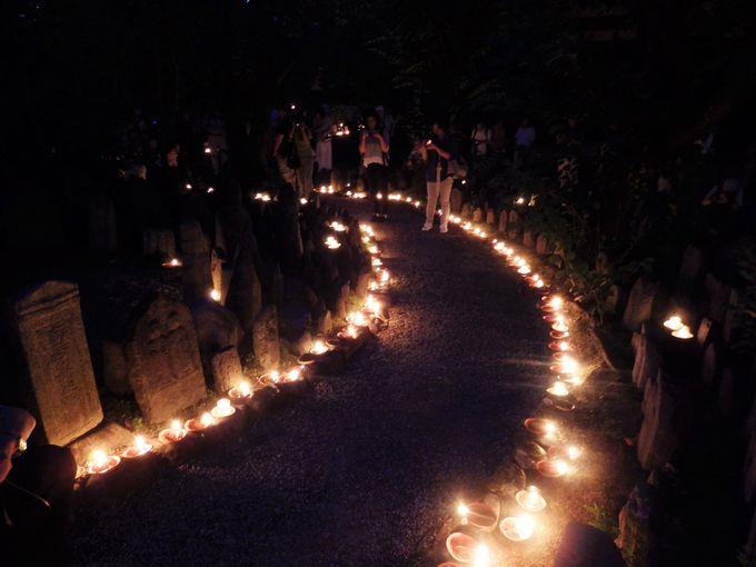 夜が更けるにつれて光の道があざやかに!地蔵石仏を照らすあたたかな灯り