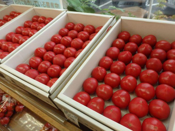 地元で収穫された新鮮な農産物がたくさん!JA南国市の直売所「風の市」