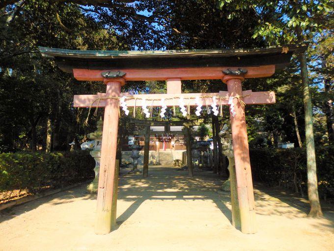 以仁王にちなむ高倉神社