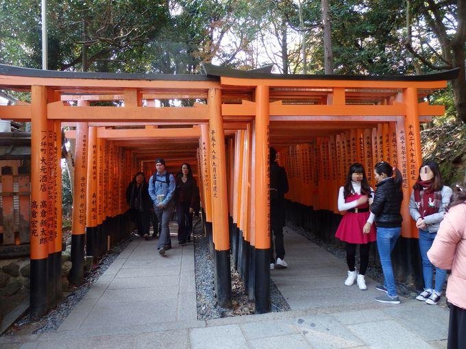 鳥居といえば、やはりこれ!多くの参拝者で賑わう「千本鳥居」