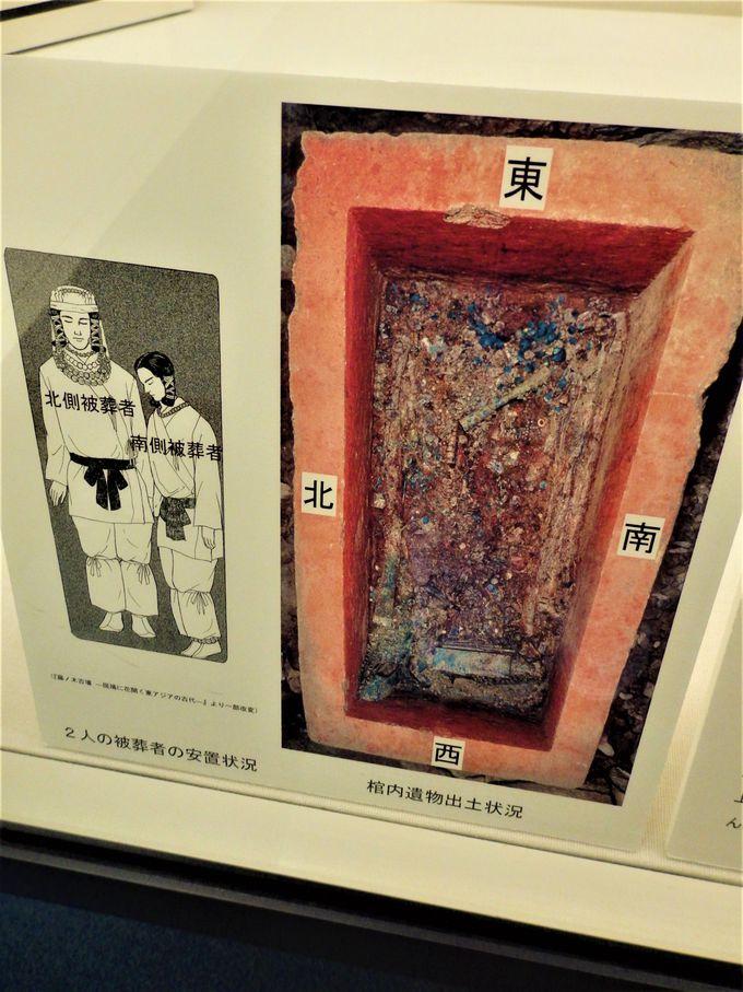 藤ノ木古墳についてより深く学ぼう!藤ノ木古墳について紹介した斑鳩文化財センター