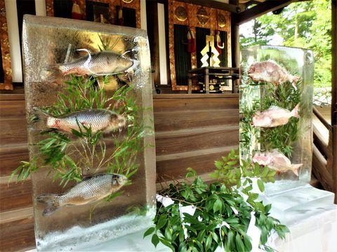 氷柱のなかを泳ぐお魚!?奈良市・氷室神社「献氷祭」
