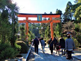 寺と神社まとめて初詣!お風呂やバラ園もある奈良市「霊山寺」