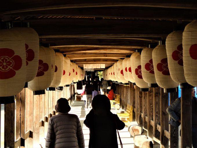 吉備津神社だけじゃない!長い回廊