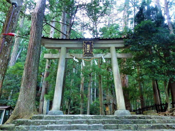 那智の滝を御神体とする飛瀧神社