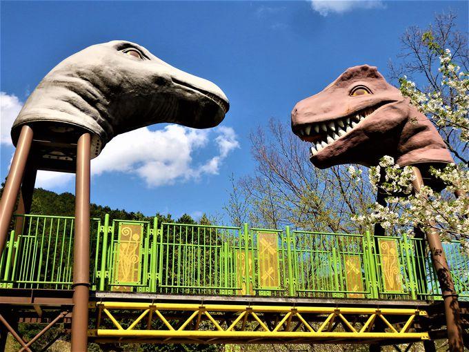 恐竜の国へようこそ!恐竜をモチーフにした回廊型アスレチック遊具